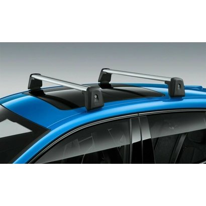 BMW BMW Dakdragers 1 Serie F40