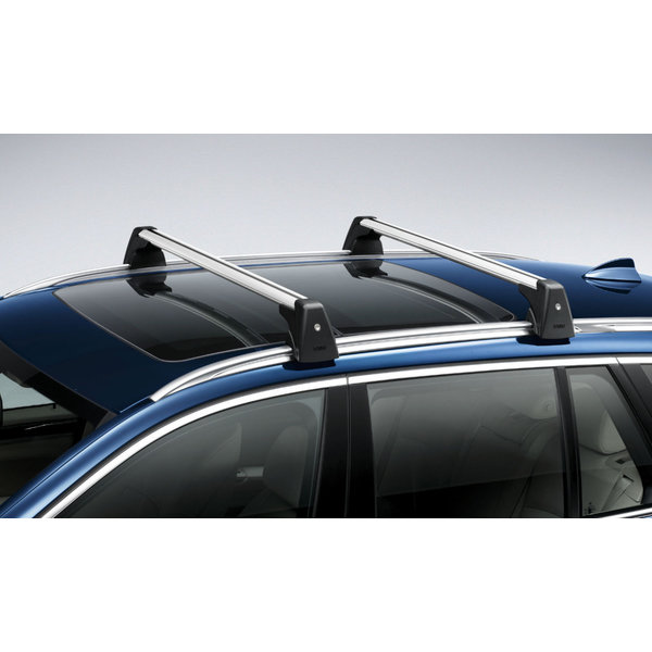 BMW BMW Dakdragers X3 (F25)