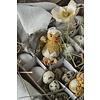 IB Laursen 3 verschiedene Osterhühnchen , handgehäkelt von IB Laursen