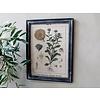 Chic Antique Bild mit Blumenmotiv und schwarzem Rahmen von Chic Antique