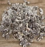 Birchpine White Tip 100 gram.