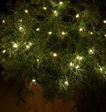 Sirius Home Knirke 3,9 m 40 LEDs Fairy LEDs Green