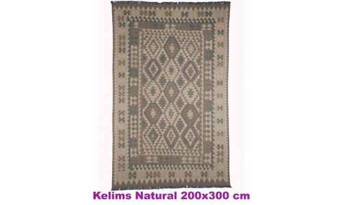 Natural Kelim 200x300 cm