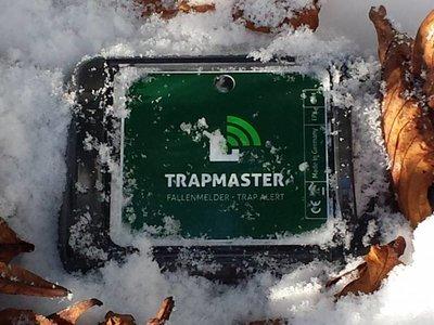 Testen Sie den TRAPMASTER 30 Tage kostenlos (gültig nur innerhalb Deutschlands)!