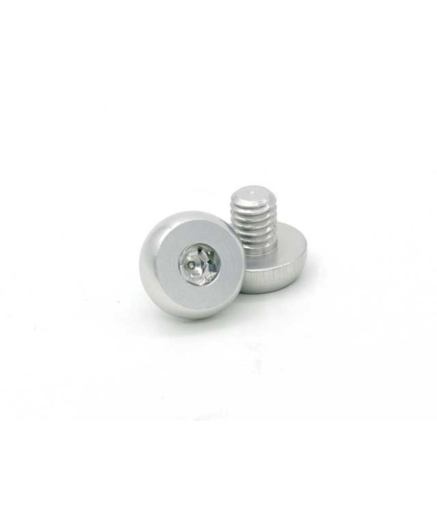 AIP CNC Stainless Steel Grip Screws For Hi-Capa (Silver)