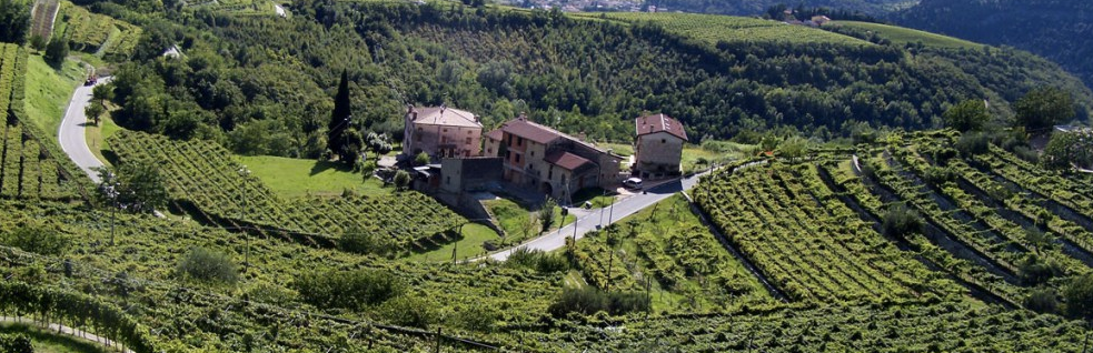 Valpolicella Wijnmarkt