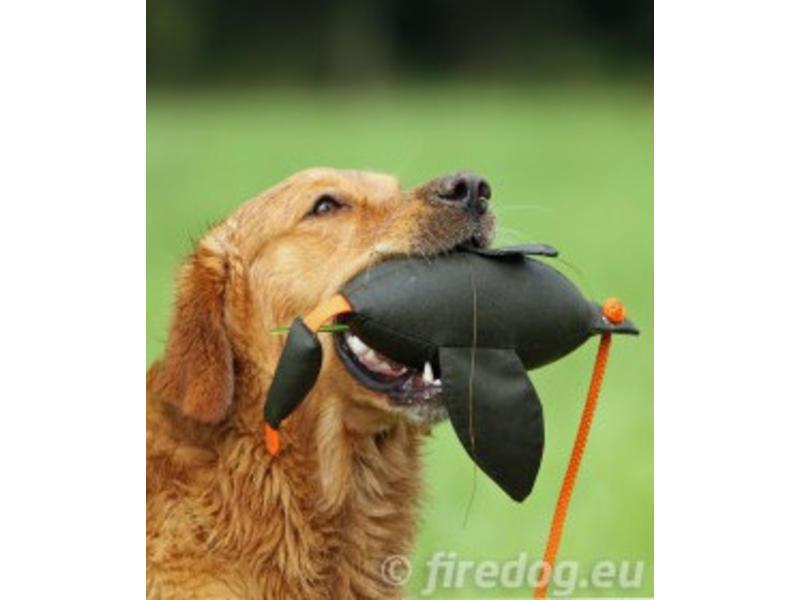 Firedog Eenden Dummy 600 gram