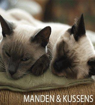 Heerlijkste manden en kussens hond en kat
