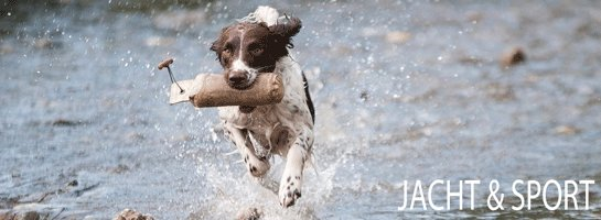 Alles voor uw jachthond
