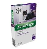 Advantage BAYER advantage kat 4kg en meer