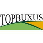 Topbuxus
