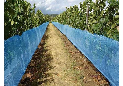 Vogelnet Vinea Wijnbouw