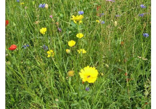 Floramengsel fleurige braak