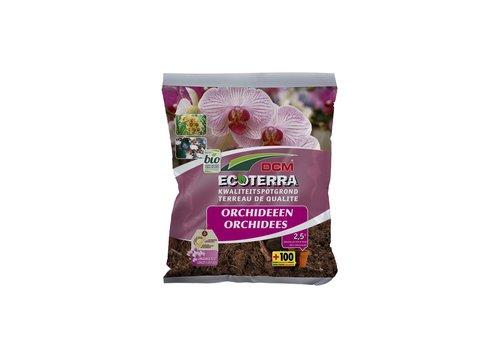 Ecoterra Orchideeën