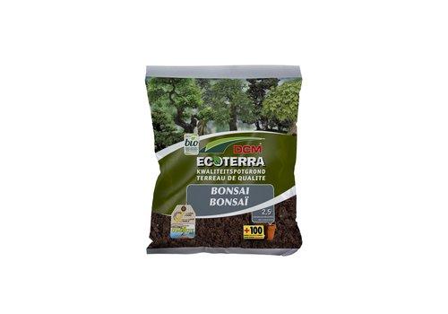Ecoterra Bonsai