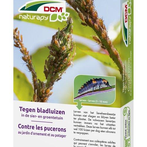 DCM Insectenbestrijders