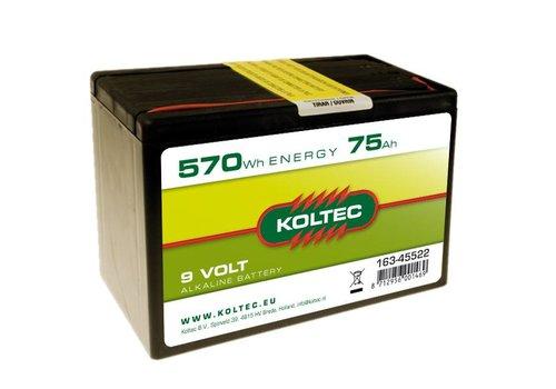 Batterij 9 Volt - 570Wh - 75Ah Alkaline