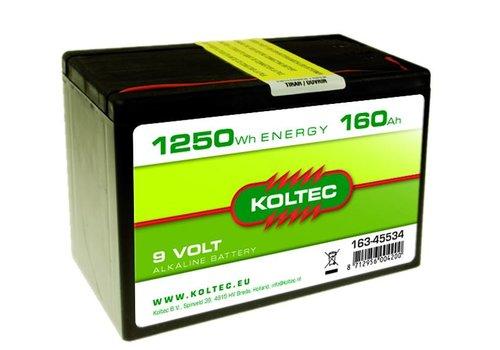 Batterij 9 Volt - 1250Wh - 160Ah Alkaline