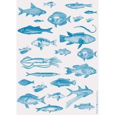 Frohstoff GESCHENKPAPIER/ POSTER Fische blau 50x70 cm
