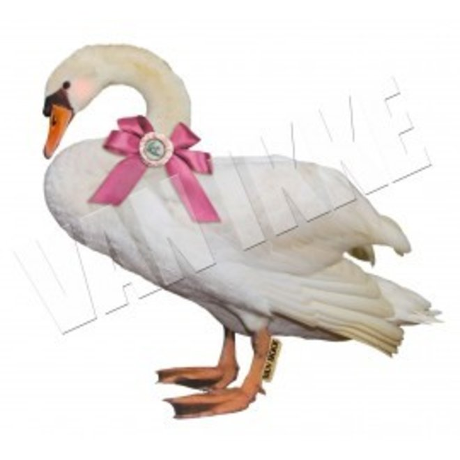 Iron-on transfer swan for coveralls