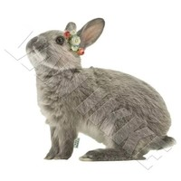 Ironing bunny with flower wreath