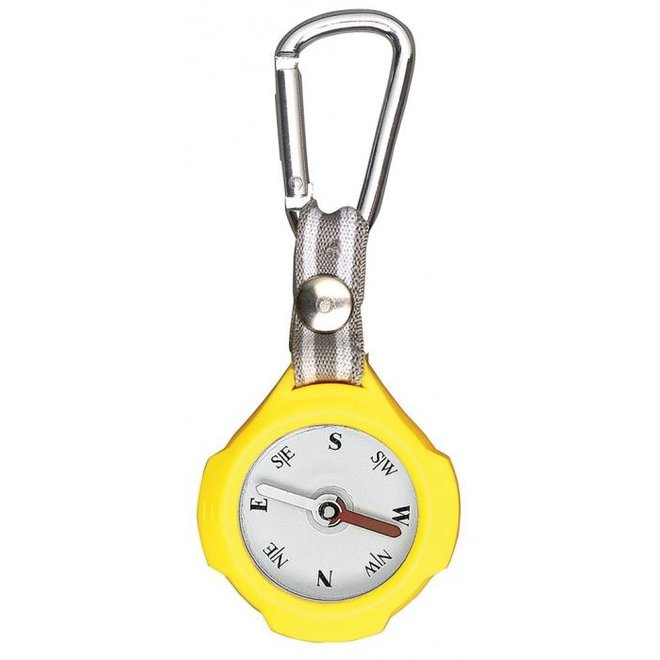 Keychain with compass and carabiner