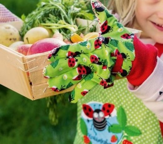 Everything for the children's vegetable garden
