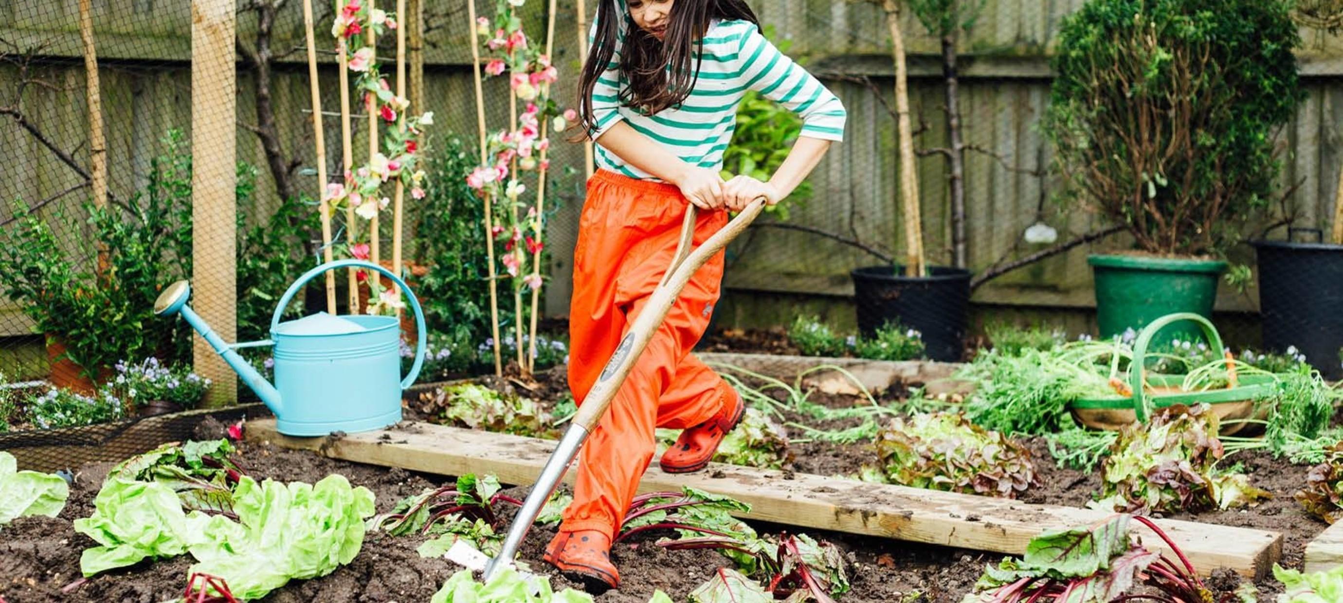 10 tips voor (moes)tuinieren met je kind