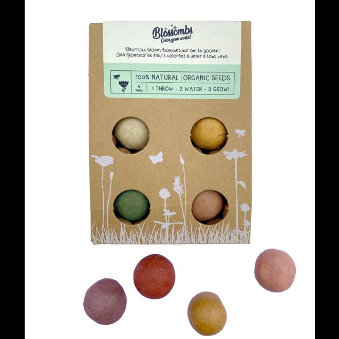 Zaadbommetjes | Set van 4  in cadeauverpakking