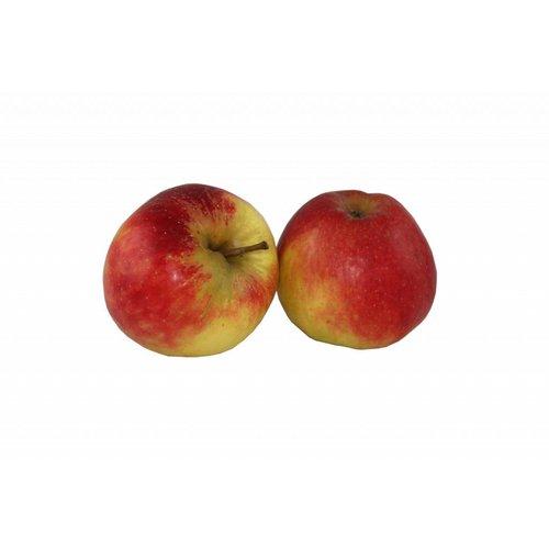 Fruchthof Dambacher (Aalen) Apfel Elstar (ca. 150g/Stück)