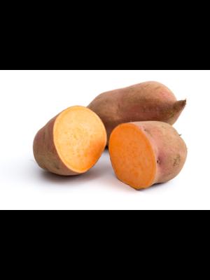 Fruchthof Dambacher (Aalen) Süßkartoffeln (100g)