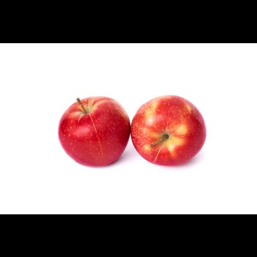 Gärtnerei Schönherr (Bopfingen) Apfel Rubinette (ca. 140g/Stück)