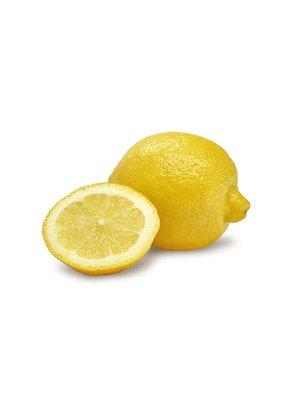 Fruchthof Dambacher (Aalen) Zitrone unbehandelt