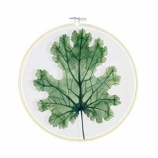 Olislagers Hoops - Plume poppy leaf - L