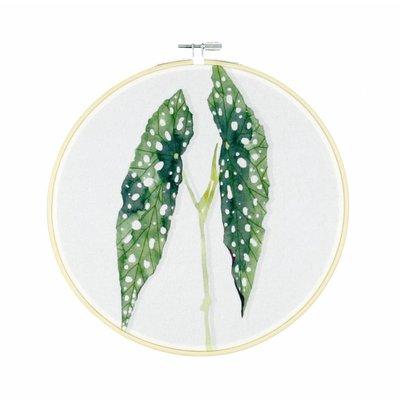 Olislagers Hoops - Polkadot plant - L