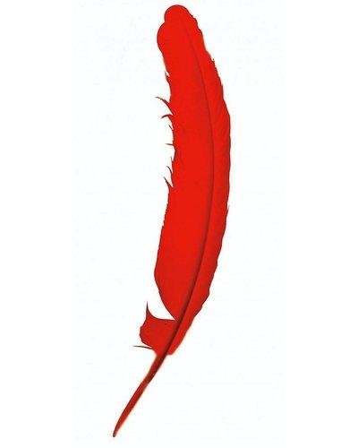 Magicoo Indianen veer - Rood - 30 cm lang