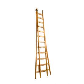 Professionele ladders