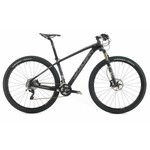 Lee Cougan Rampage Race XT 29""