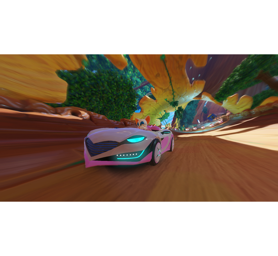 PS4 Team Sonic Racing kopen