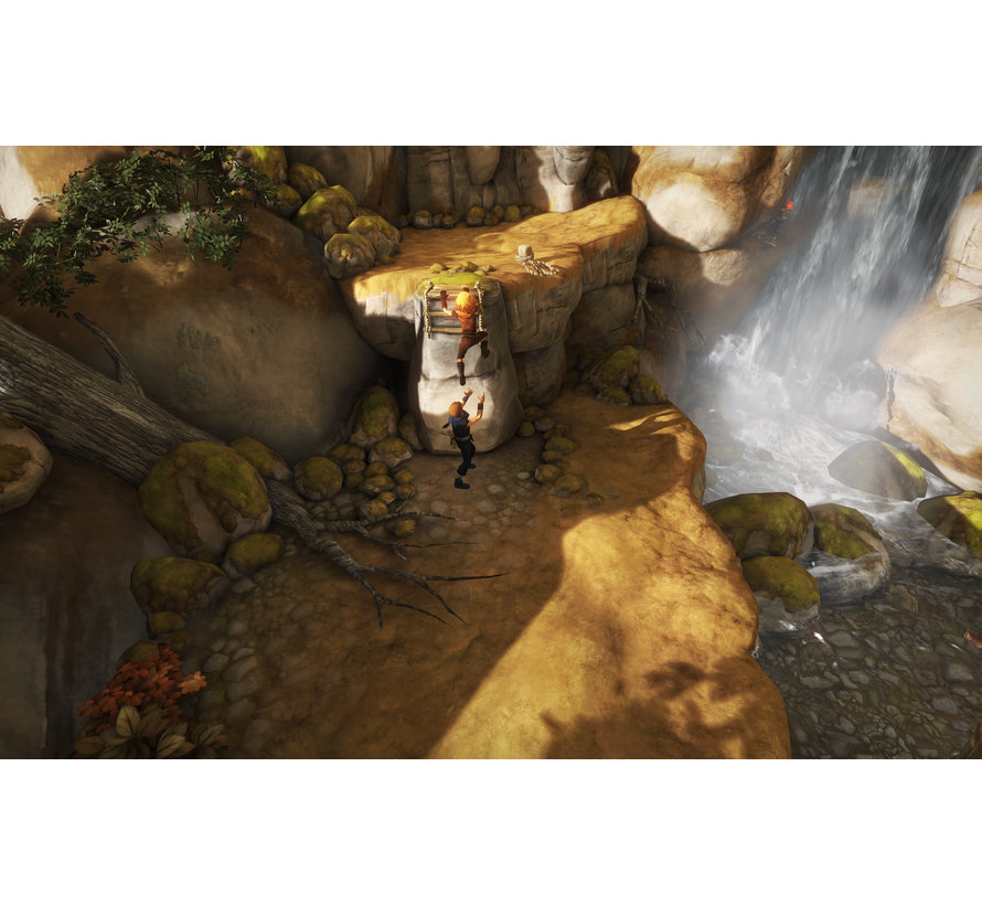 PS4 Brothers: a Tale of Two Sons kopen