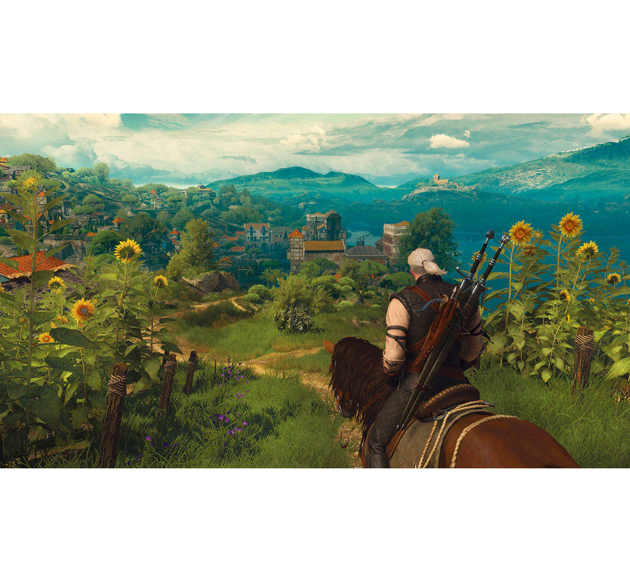 Nintendo Switch The Witcher 3: Wild Hunt - Complete Edition kopen