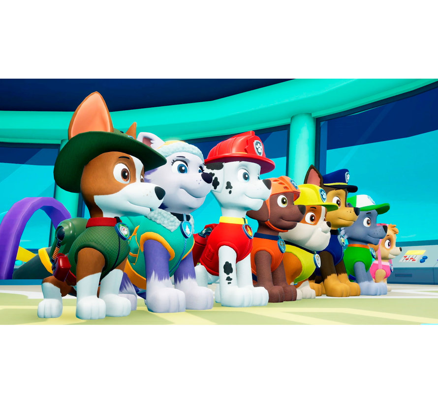 PS4 Paw Patrol: On a Roll koepn