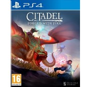 PS4 Citadel: Forged with Fire