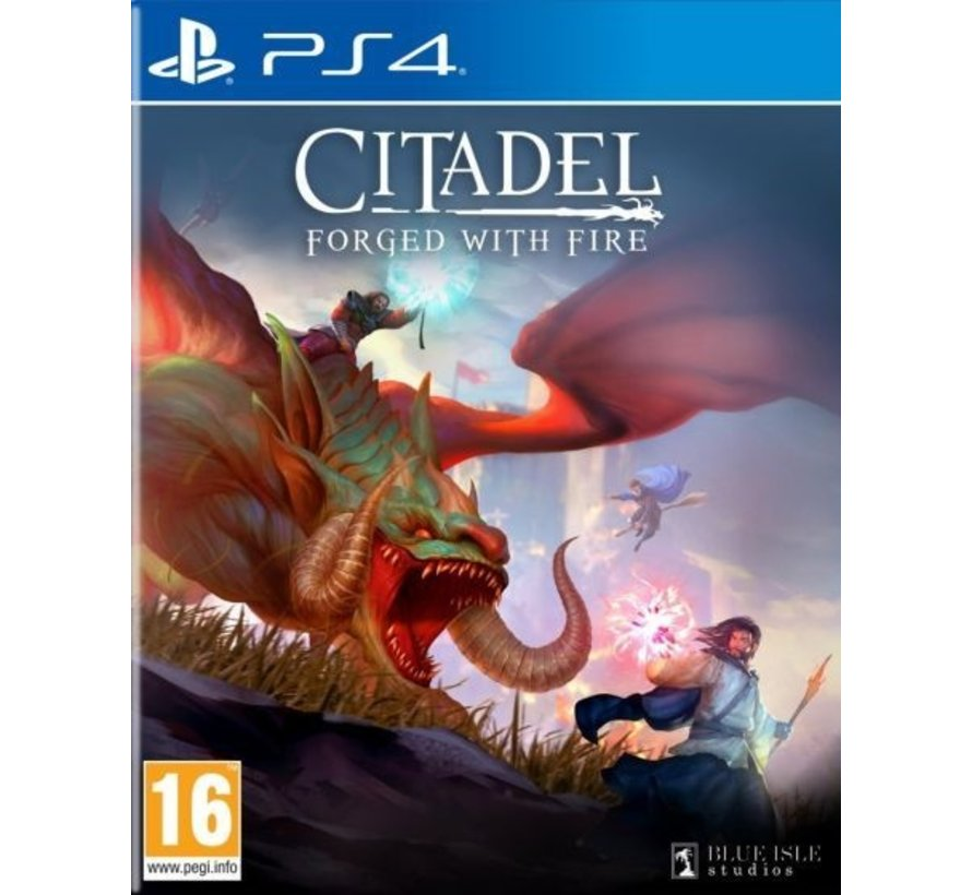 PS4 Citadel: Forged with Fire kopen