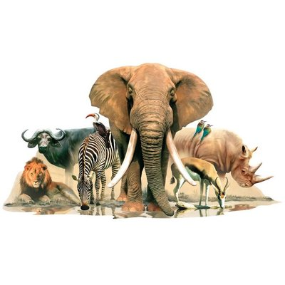 StickerkidS muursticker Afrikaanse Jungle dieren