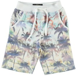 Cars Jeans bermuda Uomo Tropical