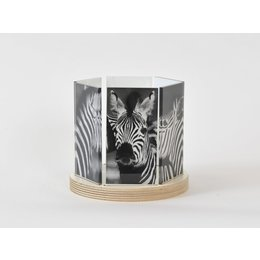 Woonlief Sfeerlicht Zebra