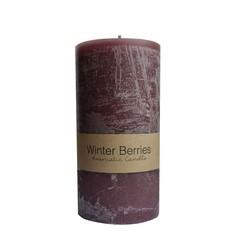 Dassie Pillar Candle 20 cm Winter Berries