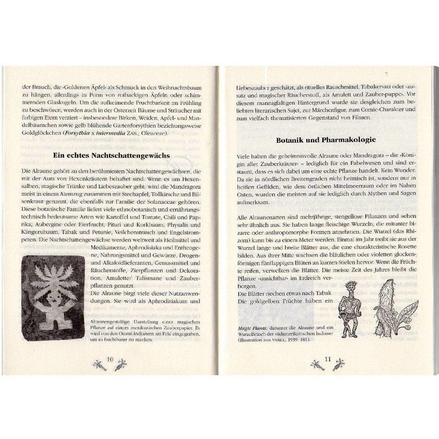 Claudia Müller-Ebeling, Christian Rätsch: Zauberpflanze Alraune-3