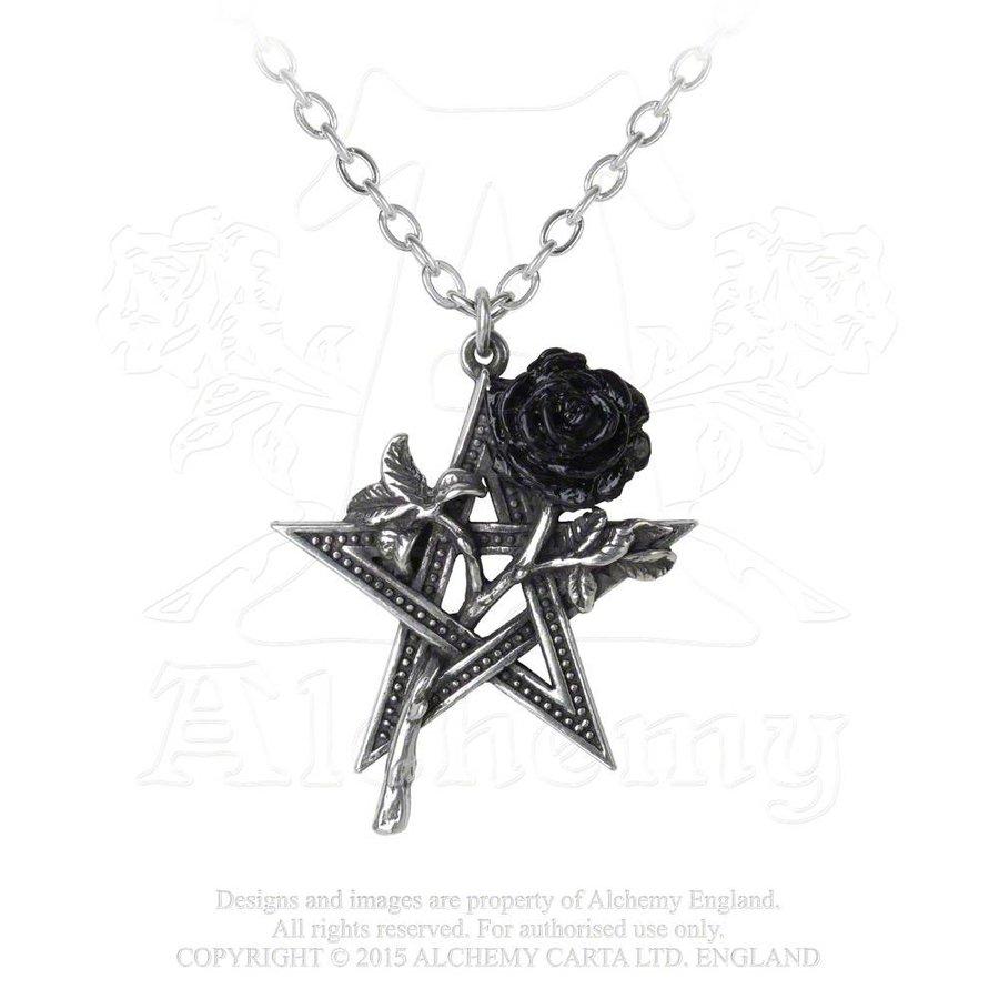 Pentagramm mit Rose Anhänger mit Kette-2